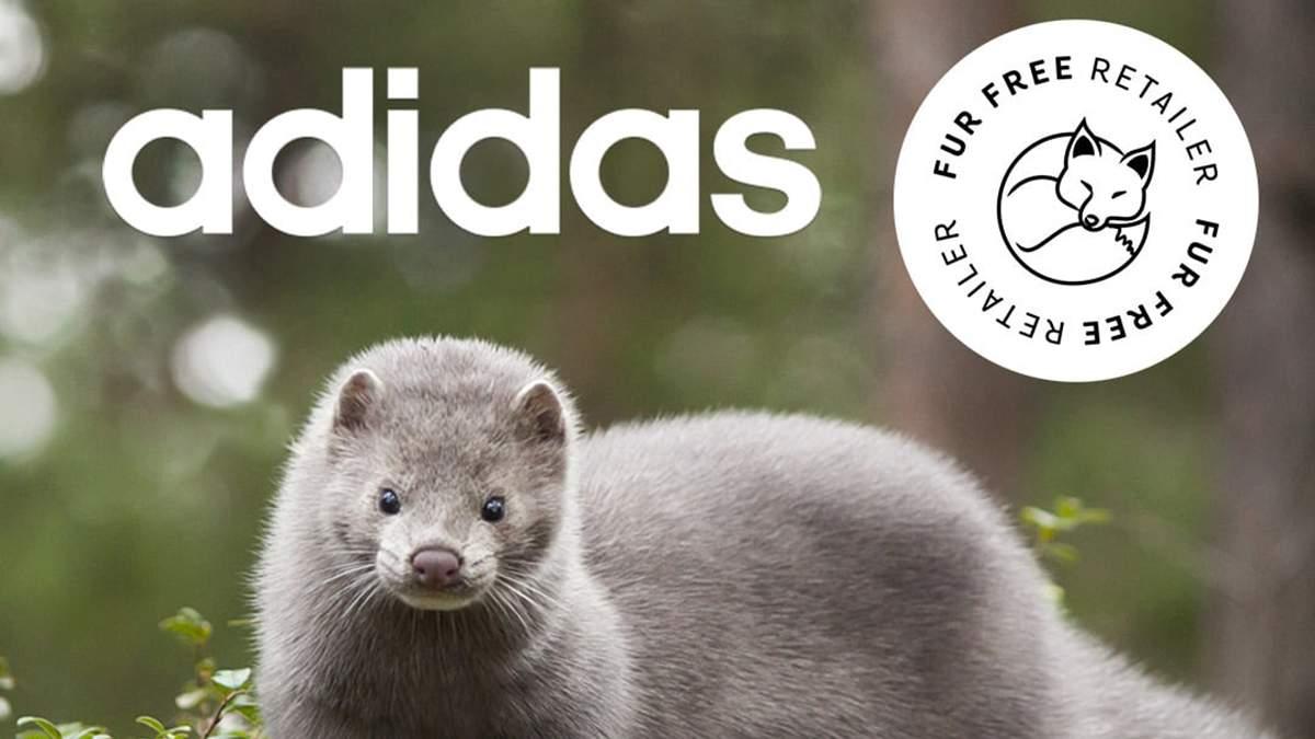Спортивний бренд Adidas відмовився використовувати натуральне хутро тварин