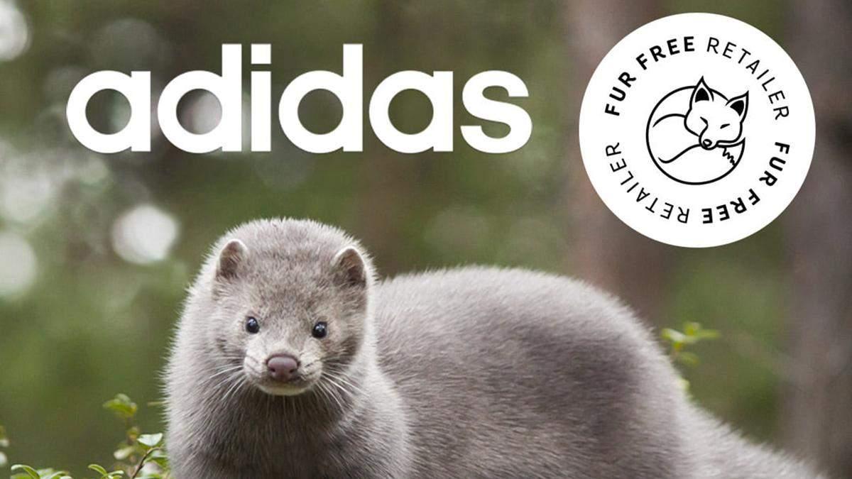 Adidas отказался от использования натурального меха