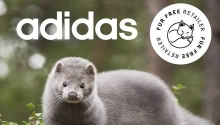 Спортивный бренд Adidas отказался использовать натуральный мех животных